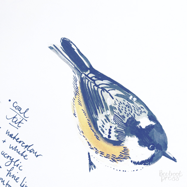 Coal tit illustration by Sarah Papworth